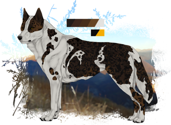 Anonymuswolf custom - Brown leopard jaro by Zeldienne