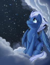 Night Glider by Scruffasus