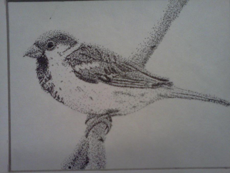 bird by Kitten--Mittens