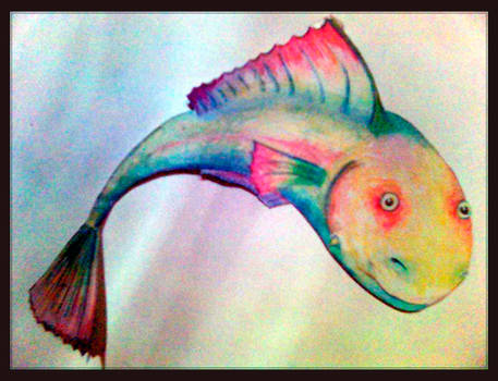 rainbow fish by sensij