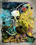 Skulls color