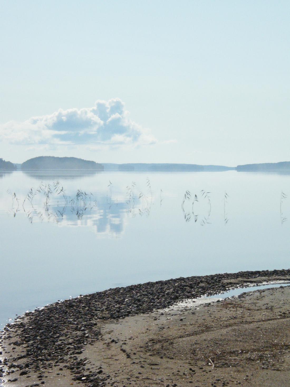 morning_mist_on_water_by_julians_derbren