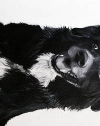 Jedda Painting by Johdie