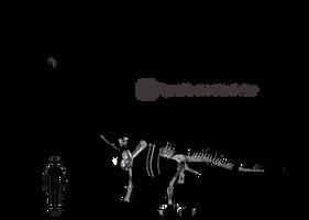 New Tienshanosaurus schematic by Megalotitan