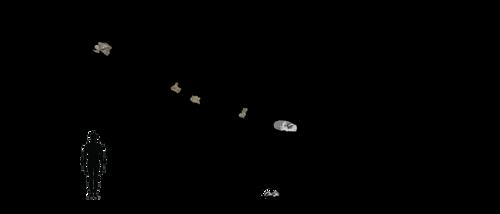 Sibirotitan revisited by Megalotitan