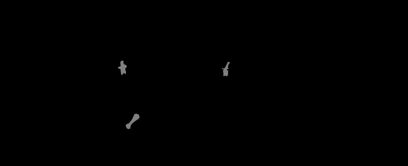 Lower Elliot anchisaur by Megalotitan