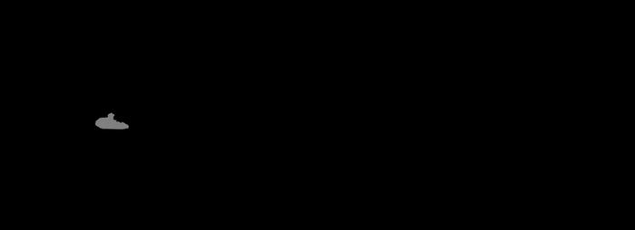 Lower Elliot 'rauisuchian' schematic by Megalotitan