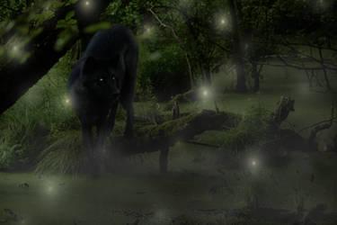 Fern and Fireflies