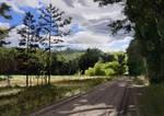 Summer landscape study
