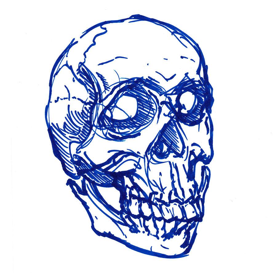 Stylized Skull Portrait, Blue Pen by heidel