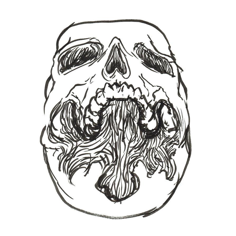 Worms Eye View Skull by heidel