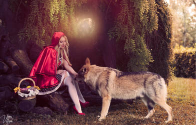 Little Red Riding Hodd and the Big Bad Wolf