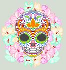 Sugar Skull by Achordingly
