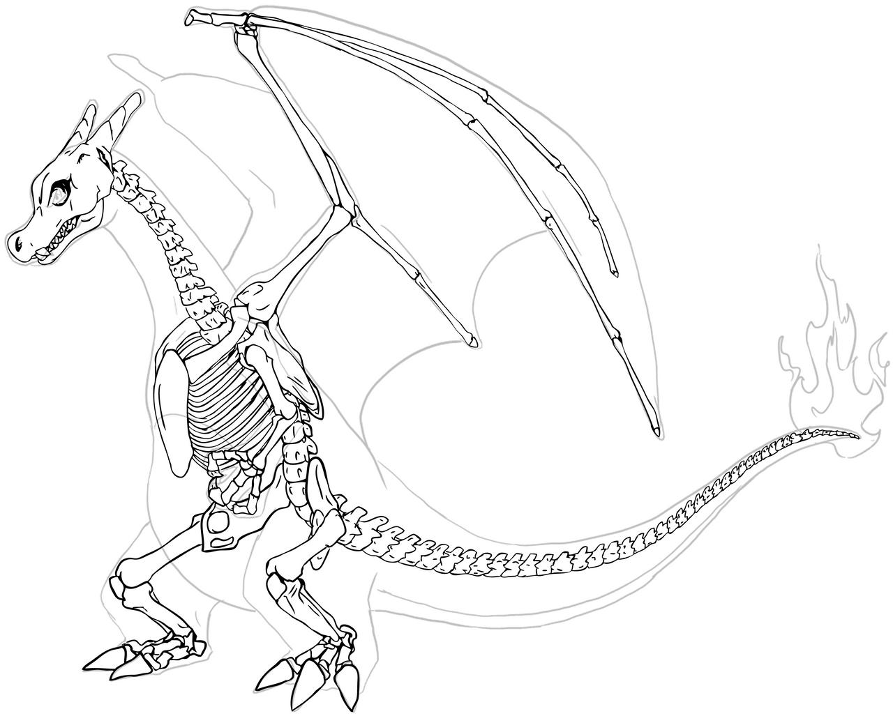 Charmeleon Evolutions Kleurplaat Charizard Skeleton By Chibi Pika On Deviantart