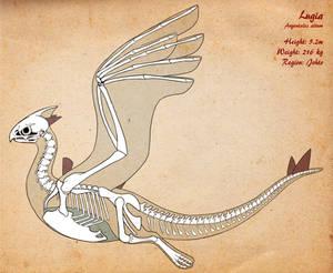 Lugia Skeleton v2