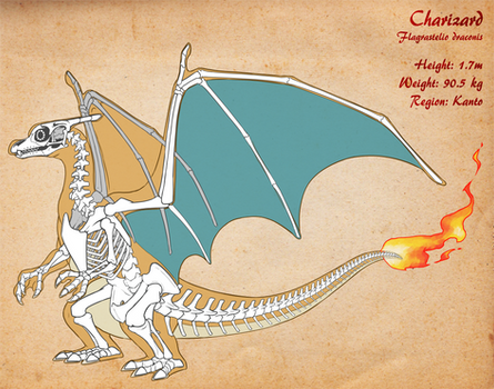 Charizard Skeleton v3