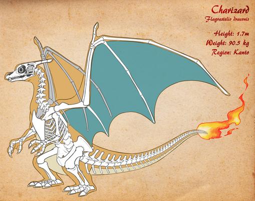 Charizard Skeleton v3