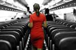 .air hostess