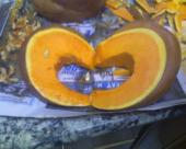 Pumpkin Love by XxMaskedPuppetxX