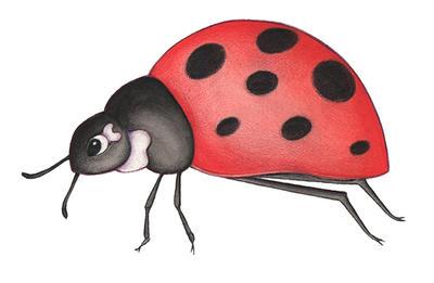 Ladybug by Handela