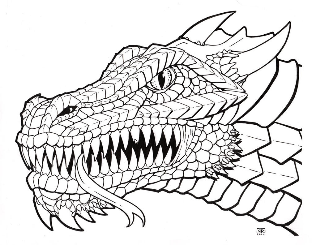 Line Drawing Head : Dragon head line art by therigger on deviantart
