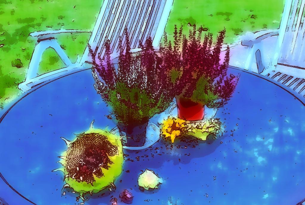 autumn2015_my garden11 by ethnonaut