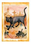 Archer Cat Family