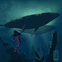 Mermaid + Whales