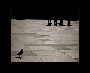 walking - standing still by Octavus