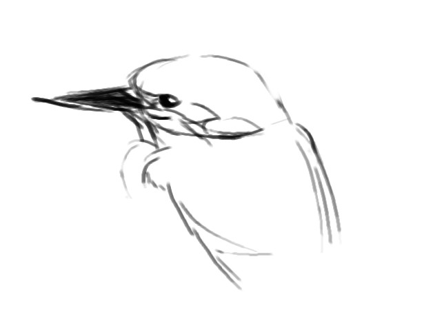 Line Drawing Kingfisher : Common kingfisher sketch by ch rl t n on deviantart