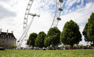 Park by the eye