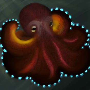 Glowy Octopus