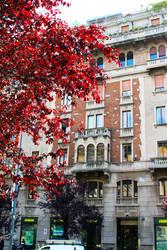 Milan, Italy by dream-happy
