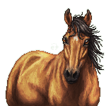 Bay Horse Pixel by xxEarthTones