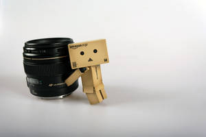 danbo - fotoshoot by FotoRuina