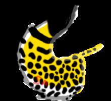 Cheetah Lupus Tail Female by Speedykitten1643