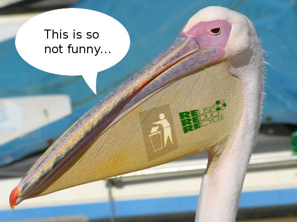 The Pelican Joke... by Crystalvix07 on DeviantArt