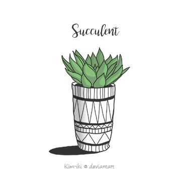 Succulent by Kim-iki