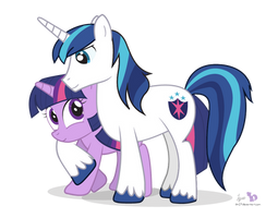 Twilight and Shining Armor by dm29