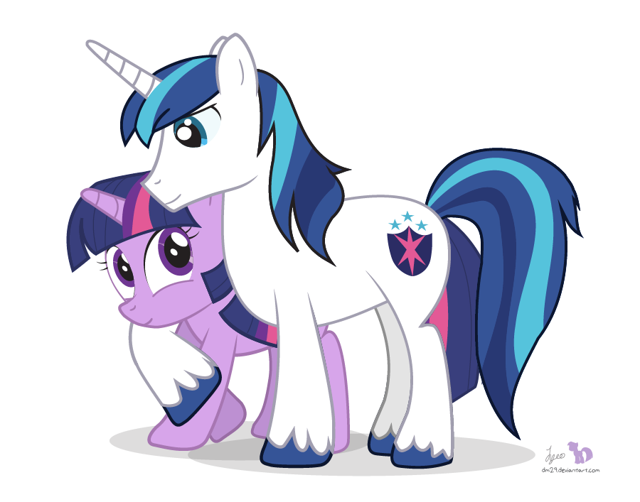 my little pony friendship is magic shining armor filly