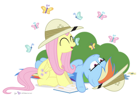 Butterfly Watching by dm29