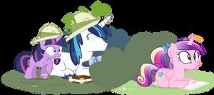 Observation: Girl Pony