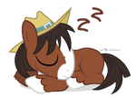 Sleepy Trouble Horse