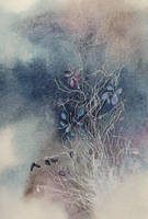 Winter / Hiver by AlexandraSerres
