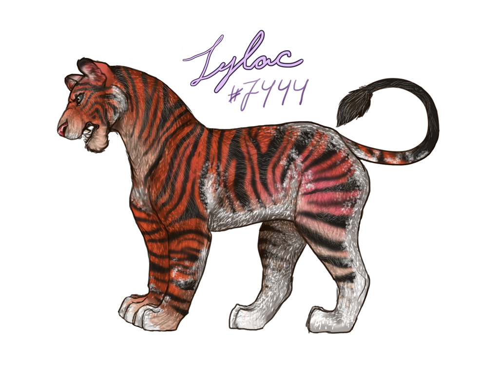 tigergirl_by_lilacbeetle-dcm1q8p.png