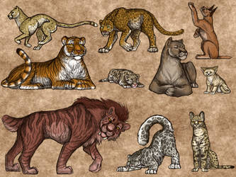 Wild Cats Study by LilacBeetle