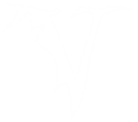 Veil of Maya - PNG Logo (white) *