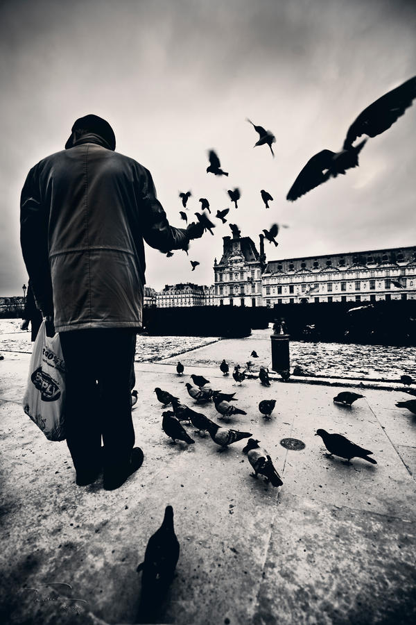 Bird_Man by fal-name