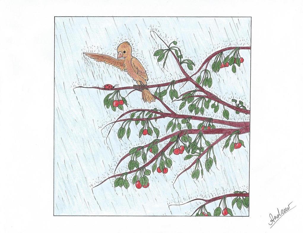 Rain cherry burd by KlarkKentThe3rd
