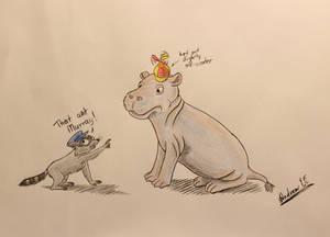 A regular hippo
